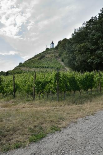 Na Piramidě je naplno cítit vinařská duše Mariboru, vinice pokrývají celý jižní svah. S barvami fotek si většinou moc nehraju, zde by ale jinak nebyla vidět mohutná oblačnost. K tomu začíná vát více než čerstvý vítr, asi se na nás žene nějaká bouře.