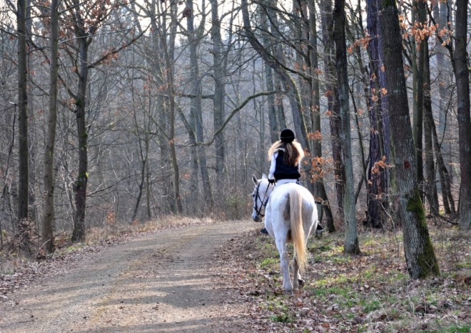 Zvláštní je, že tuhle vznešenou dámu na bílém koni jsme potkali v místě zvaném Na Kobyle.