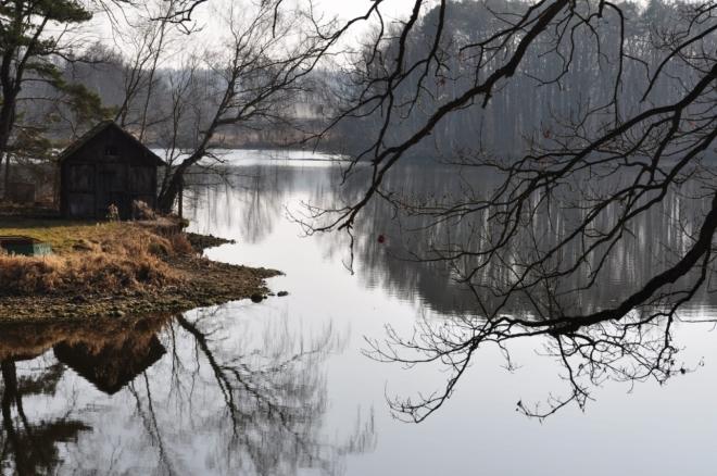 Novovrážský rybník.