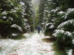 Pod Radvanoviciým hřbetem nám trochu nasněžilo. To v květnu není na Šumavě ale nic mimořádného.