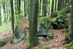 Mechem poroslé skalky se dokonale doplňují se sytě zelenou barvou bučin.
