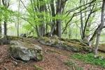 Informační cedule u dalších ze skulptur odkazuje na útvar Kamenná hlava. Tu jsme ale nenašli, a měla by být nad loukou pod Žlebským vrchem. Dobrý cíl pro plánovaný podzimní pobyt  v ubytovně NP v Českých Žlebech.