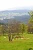 Pohled údolím Mlýnského potoka ke Stožci.