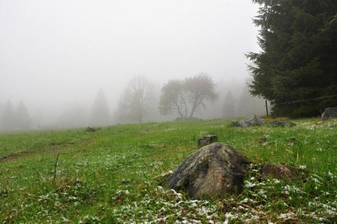 Pastviny nad Splavským potokem, který zde pramení.