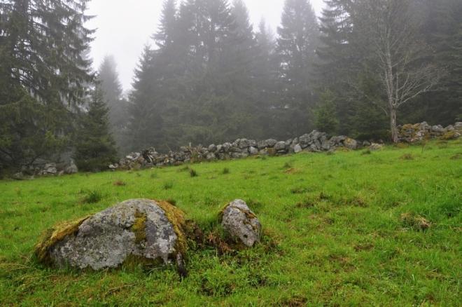 Pod Horním Cazovem je prameniště a mokřady musíme horem obejít. Mlha zde již není tak hustá a tak brzy vidíme i cestu pod námi, kde již vede červeně značená TZ.