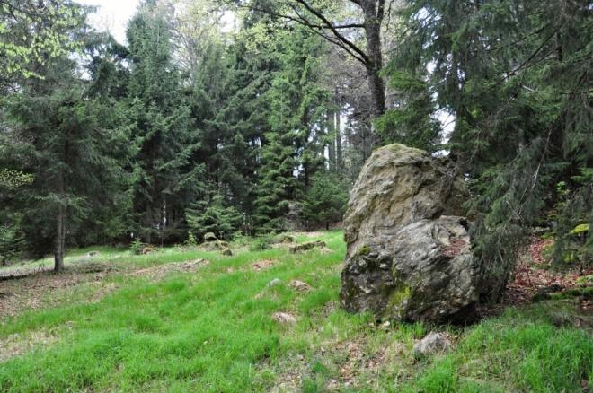 Před Sulzbergem (1 146 m n. m.).