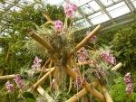 Bambusová konstrukce se zavěšenými orchidejemi