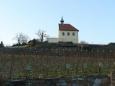 Spodní části venkovní expozice vévodí kaple svaté Kláry, pod níž se nachází stejnojmenná vinice.