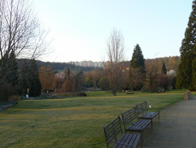 V pozadí nad zahradou jsou Bohnice, sídliště to zaslíbené nejen bláznům, ale i milovníkům přírody, jež to mají blízko do botanické.