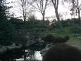 V japonské zahradě