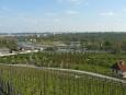 Labyrint v zahradě Trojského zámku, za ním Císařský ostrov a pak na druhém břehu Vltavy Stromovka.