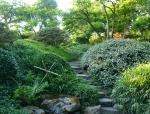 Úzké kamenné cestičky dokreslují romantickou atmosféru japonské zahrady