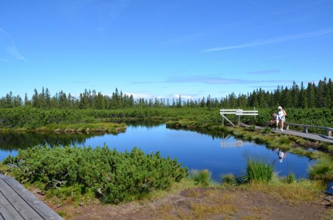 Největší jezero zaujme svým členitým tvarem, vypadá jako dvě menší jezera spojená dohromady.