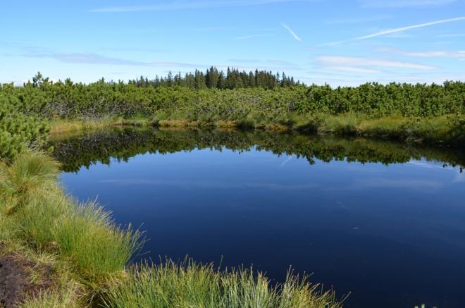 Přestože temná barva může vyvolávat odlišný dojem, žádné z jezer není hlubší než 1,2 metru.