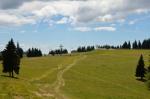 Rogla od severu, Slovinsko