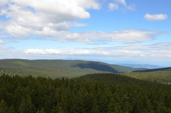 Na severu, či spíše severozápadě, vyčnívá za hustými lesy Pohorje hřeben rakouských Alp. S pomocí trojrozměrných map od Googlu (skvělý nástroj) se mi povedlo určit, že nejvyšší vrchol v pozadí je patrně Großer Speikkogel (2140 m) vzdálený přes 40 km. Vpravo je zas viditelný malý hřeben na slovinsko-rakouské hranici.
