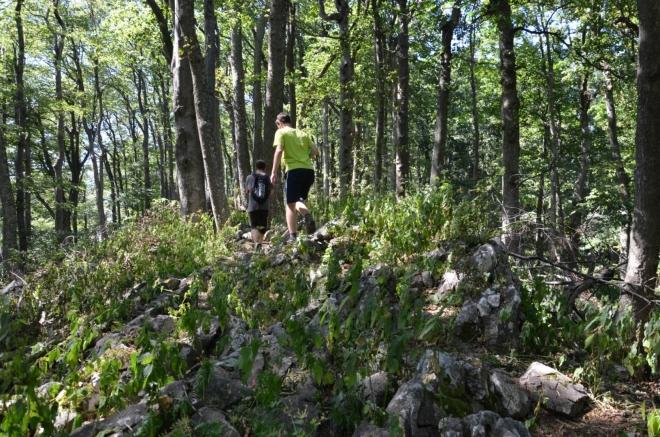 Kamenitý terén kousek pod vrcholem