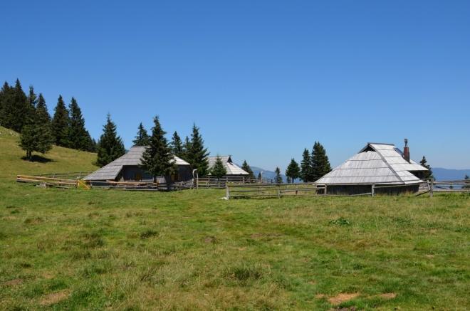 Velika Planina je v létě jedna velká pastvina (tak zní i český překlad názvu), ideální prostředí pro milovníky skotu. Zde narážíme na první z několika místních pasteveckých osad, vybudovaných takřka výhradně ze dřeva.