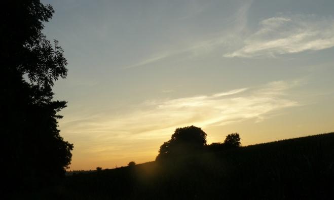 Západ slunce u lesíka, v němž jsme chtěli spát