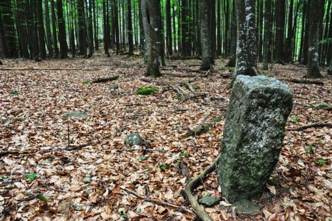Stezka je vyznačena starými patníky.