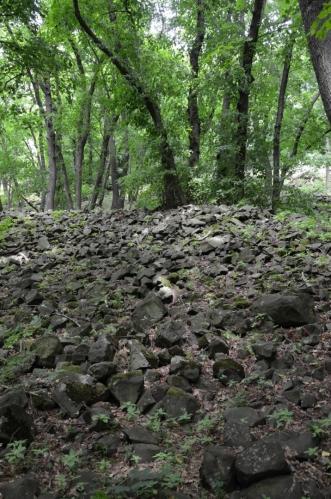 Pod vrcholem potkáváme rozsáhlé plochy zasypané kameny. Uvažuji, jestli už toto nejsou zbytky místního hradu, ale ty by zřejmě nepokryly tak velkou oblast.