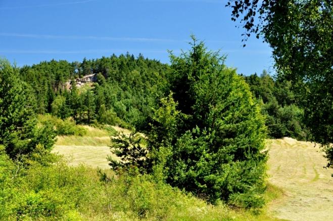 Od louky V Konvalinkách dohlédneme ke skalám Měděného vrchu.
