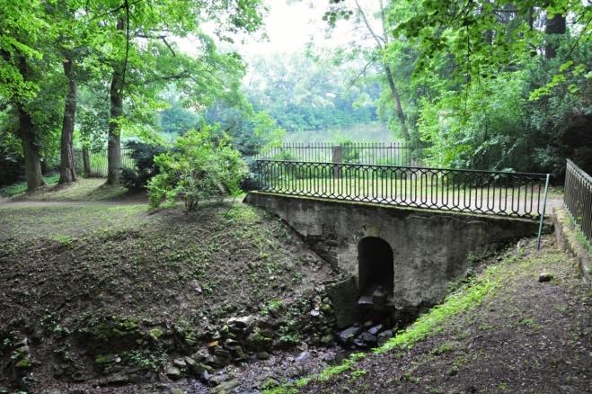U Dalbergova rybníka.
