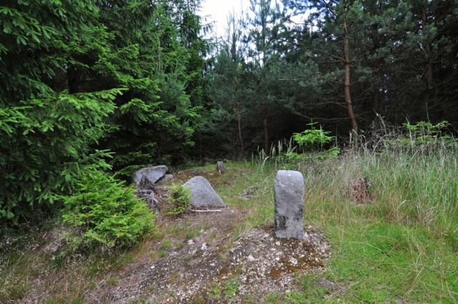 Šibeník je celý pokrytý lesem, jen zde se otevírá nižším porostem marný výhled nikam. Patník není vrcholovým bodem, ale dalším z historických mezníků Čech a Moravy. Dnes je tato hranice setřena podivným a umělým krajským celkem Vysočina.