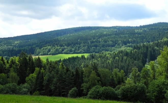 Pohled od Císařského dvora k masívu Huťské hory, kterým vedla jedna ze Zlatých stezek..