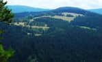 Sedelský vrch nad Srnín skrývá vyšší Spálený (1 013 m n. m.).