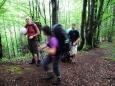 Dlouhé stoupání k Halamovo kopě překonává 600 výškových metrů a dost dává zabrat. Jdeme velmi pěkným bukovým lesem.