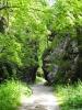 Ke Skalní bráně vede značená odbočka a tak se bez báglů jdeme na ni podívat.