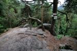 Ze skalního útesu lze spatřit Říp. Podle něho se vyhlídka také jmenuje.
