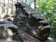 Na skalní útvar Žáby dopadají sluneční paprsky a ničí pokusy o dobrou fotku. Pro ni je v lese důležité, aby slunce pohaslo za mraky.