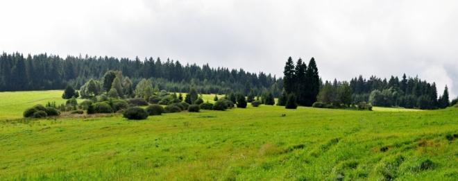 Louky u Lipové se rozkládají pod Kraví horou (930 m n. m.).
