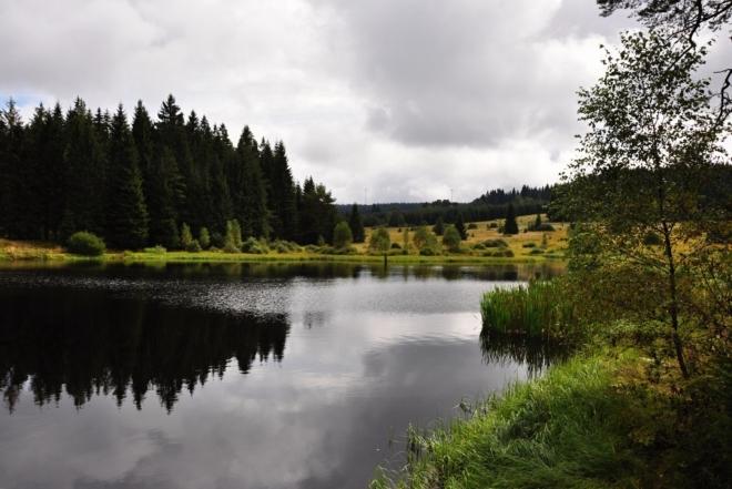 Jezírko U Překopané hráze se dnes ukazuje opět v plné kráse a je přiřazeno do PR Rašeliniště Kapličky.