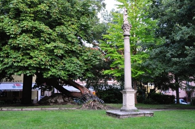 Morový sloup na náměstí a strom ukládající se k spánku.