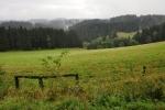 Údolí Novoveského potoka jsme měli původně přejít, značku jsme ale odbočit neviděli.