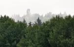 Před  kopcem Širák se na chvilku otevírá pohled na zvláštní rozhlednu na Krásenském vrchu.