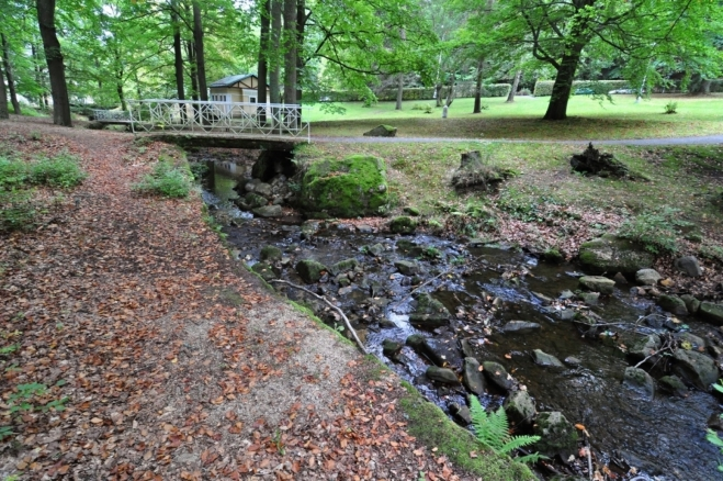 Úšovický potok pramení pod Královým kamenem (852 m n. m.).
