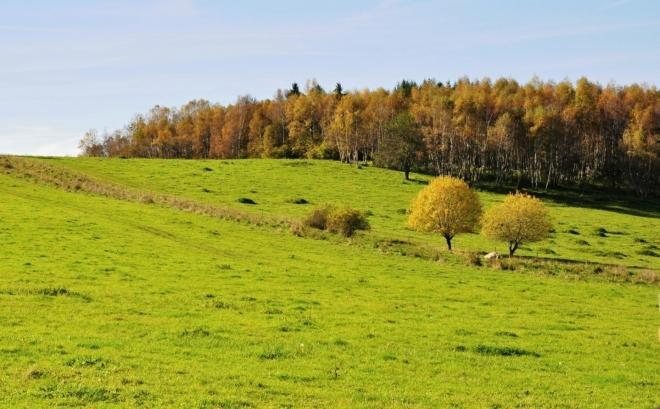 Pastviny u Ktišky jsou již opuštěné.