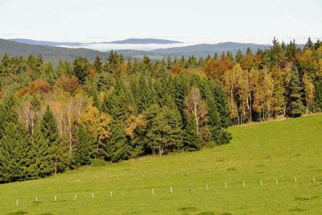 Vystupujeme nad lesy a v dáli nad inverzní mlhou vidíme jasnou linii Brd a Třemšínem. Tato fotka je ale nebřibližuje.