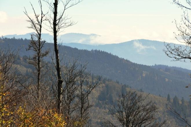 Pohled k Zátoňské hoře (vpravo v pozadí)