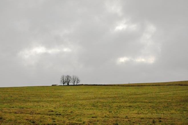 Krajina je zde otevřená, vše pokrývají rozsáhlé pastviny.