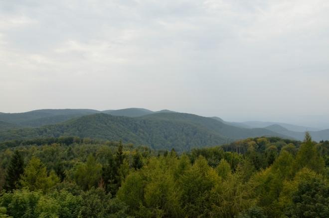 Asi všechny vrcholy Bukových hor, které přesahují 900 metrů (a že jich je), jsou koncentrovány východně až jihovýchodně od Szilvásváradu. Bálvány by měl být nejsevernějším z nich, takže při pohledu na jihozápad máme srdce pohoří jako na dlani.
