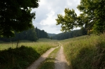 Národní park Bukové hory, cesta z Bálvány do Szilvásváradu, Maďarsko