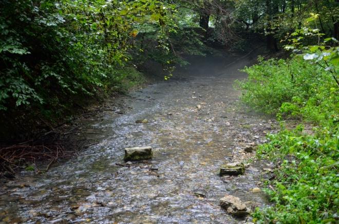 Od jeskyně sestupujeme k průzračnému potoku Szalajka, jenž má na svědomí vznik stejnojmenného, 4 km dlouhého údolí sahajícího až k Szilvásváradu. Tedy, podle některých map je toto jen přítok Szalajky, ale budeme věřit zdejší informační ceduli.