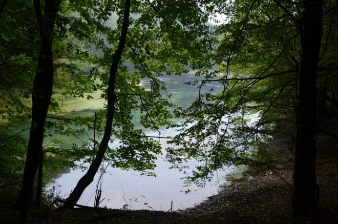 Hned opodál prosvítá mezi stromy menší jezero. Nejsem si jistý, jestli leželo na potoce, ale zřejmě ano.