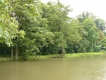 Další rybník na okraji parku