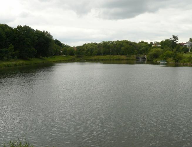 Rybník Velká Obůrka ve Vinoři